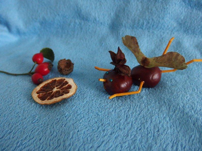Anjelik z gaštanov | apple