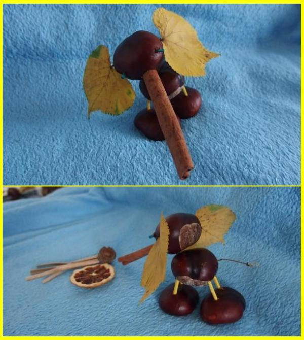 Sloník z gaštanov | apple