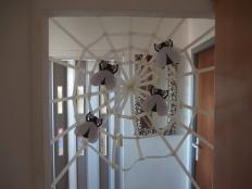 Hry na pavúkov a muchy  - foto postup