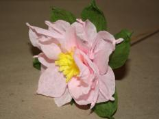 Fotopostup na kvety z krepového papiera - foto postup
