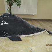Veľryba pre vnúčika