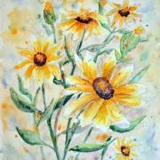 Mini-slnečnice - akvarel