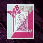 Tulipány - pohľadnica