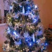náš tohtoročný vianočný stromček..