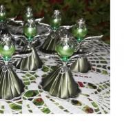 Anjelik zelený s rondelkou na hlavičke.