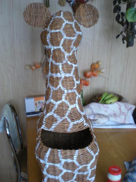 Žirafa  14