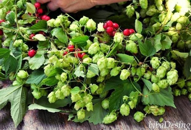 Tvorenie pri kávičke: Jesenný veniec z chmeľu a hlohu 4