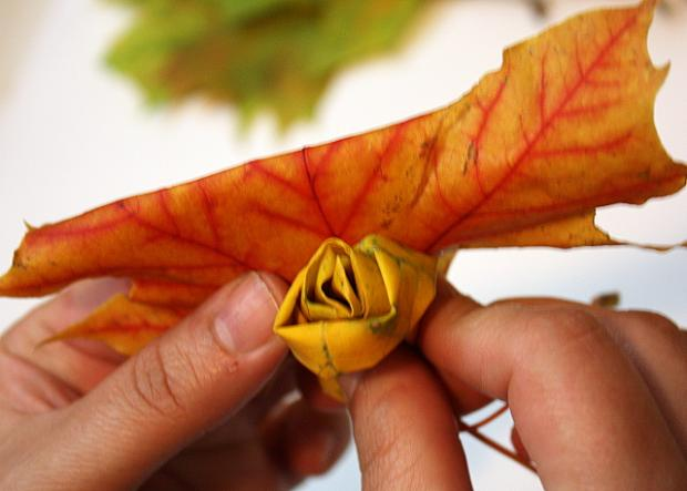 Fotopostup na ruže z javorového lístia 10