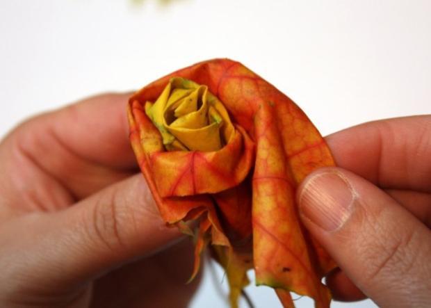 Fotopostup na ruže z javorového lístia 14