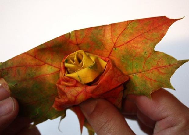 Fotopostup na ruže z javorového lístia 16