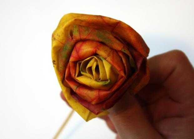 Fotopostup na ruže z javorového lístia 17