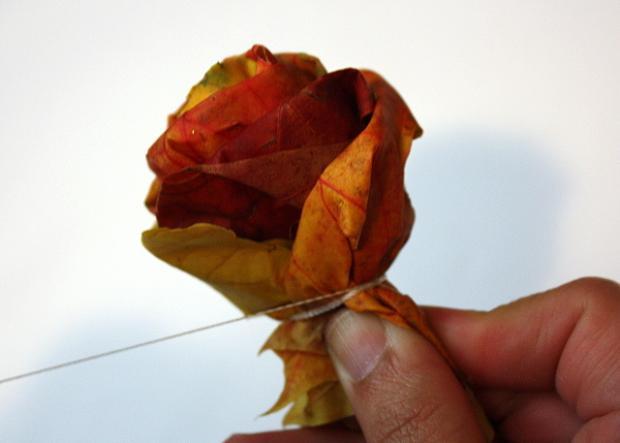 Fotopostup na ruže z javorového lístia 18