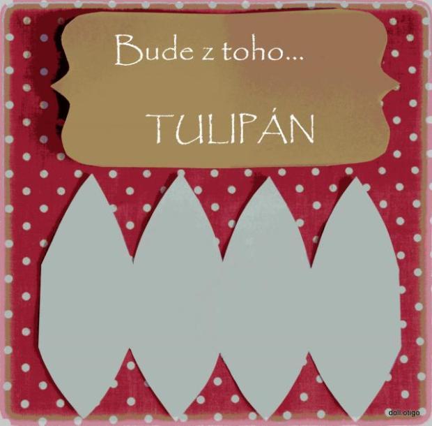 Bude z toho tulipán 1