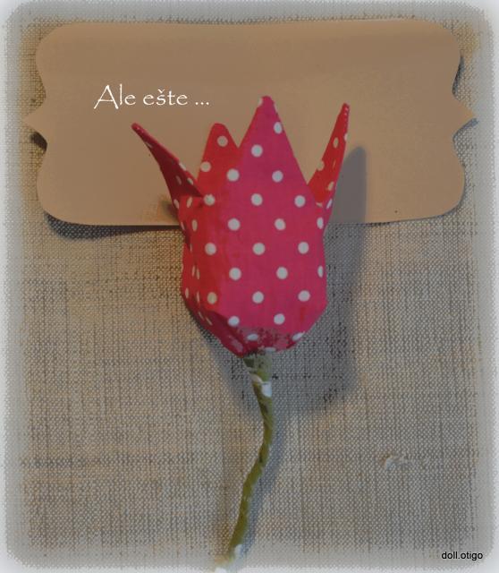 Bude z toho tulipán 15