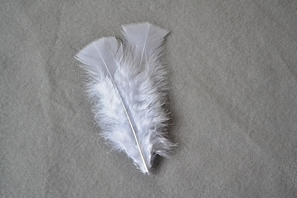 Svadobné pierko z peria 3