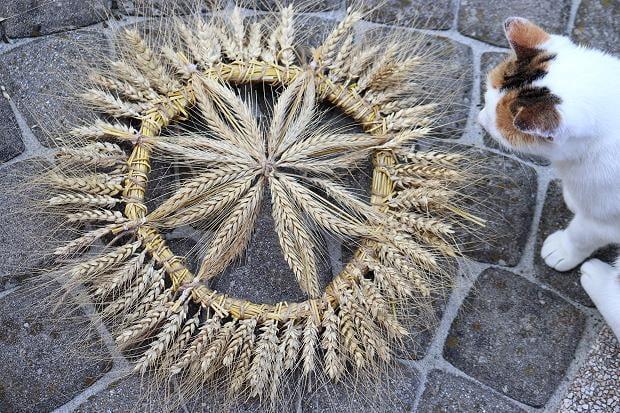 Fotopostup na rustikálny veniec z obilia 2