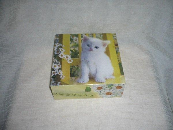 obrázky bielej mačička zadarmo sledovať porno
