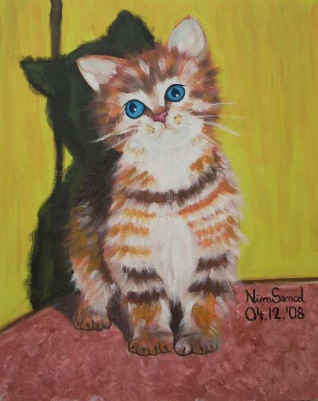 Nové mačička obrázky