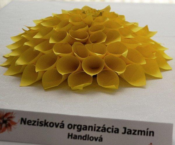 Festival neobyčajných kvetov Piešťany I. 12